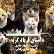 هفتمین شماره رادیو نوپا-داستان کوتاه فریاد گربه